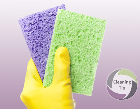 How to Clean a Sponge