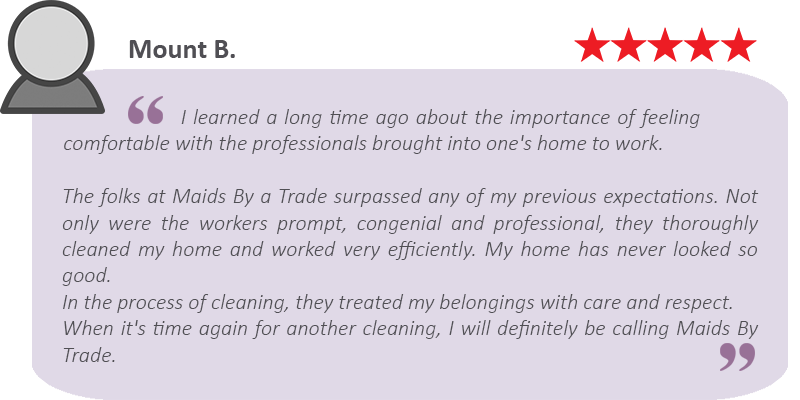 Yelp House cleaning review by Mount