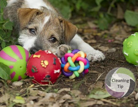 Clean Pet Toys Using These Quick Tips