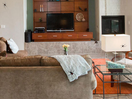 Image of a well-decorated living room, with black widow spiders crawling around it